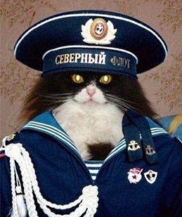 Kapitan Z