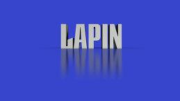 Иван Лапин