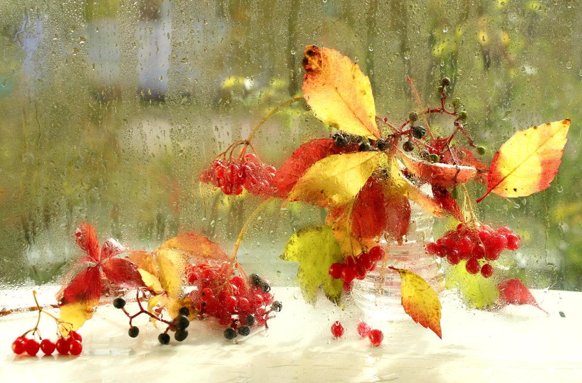 Яркие краски осени - Татьяна Беляева