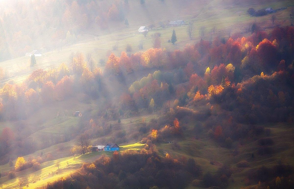 Полосатая  осень - Андрій Кізима