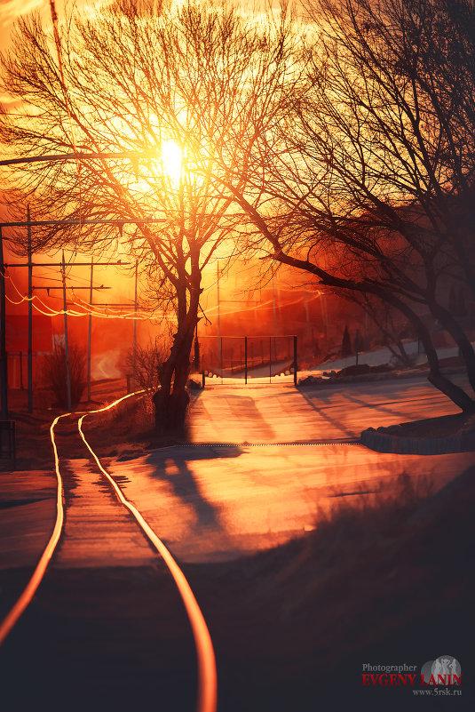 Ночь, как ночь..и улица пустынна, как всегда... - Евгений Ланин