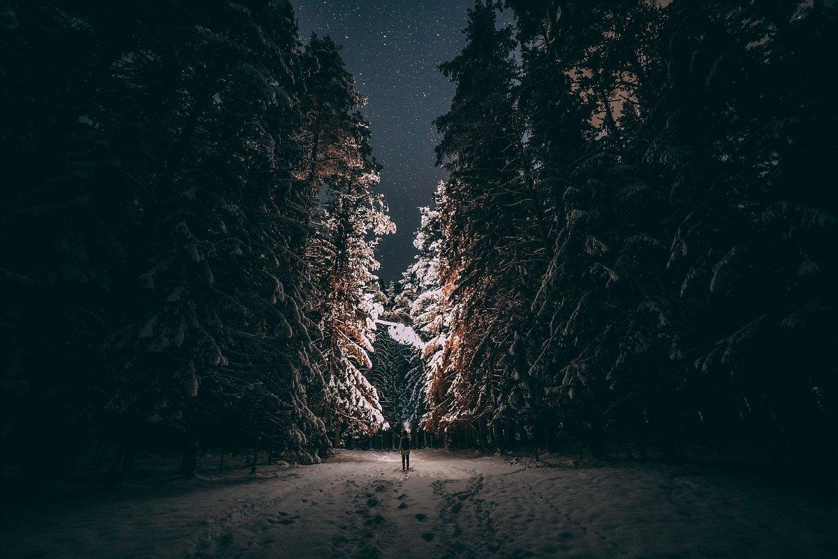 Путешествие в сказку - Татьяна Афиногенова
