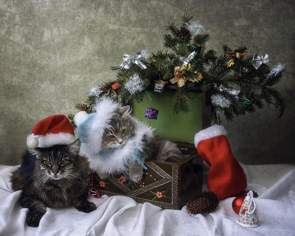 Санта Клаус и Снегурочка - Ирина Приходько