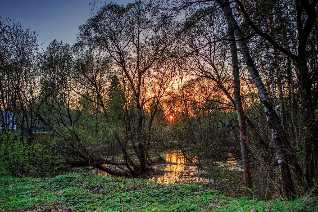 Весна на болоте - Светлана Матонкина