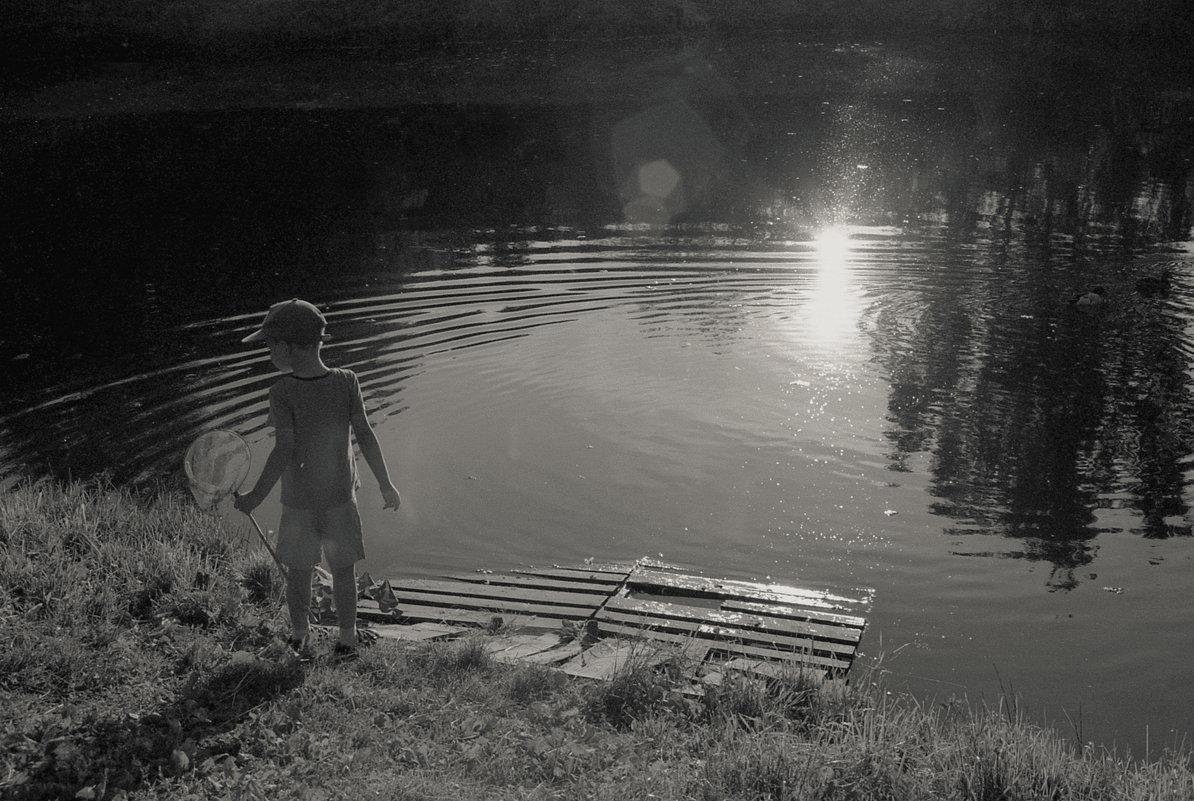 Сачок и солнце - Lena Zalesska