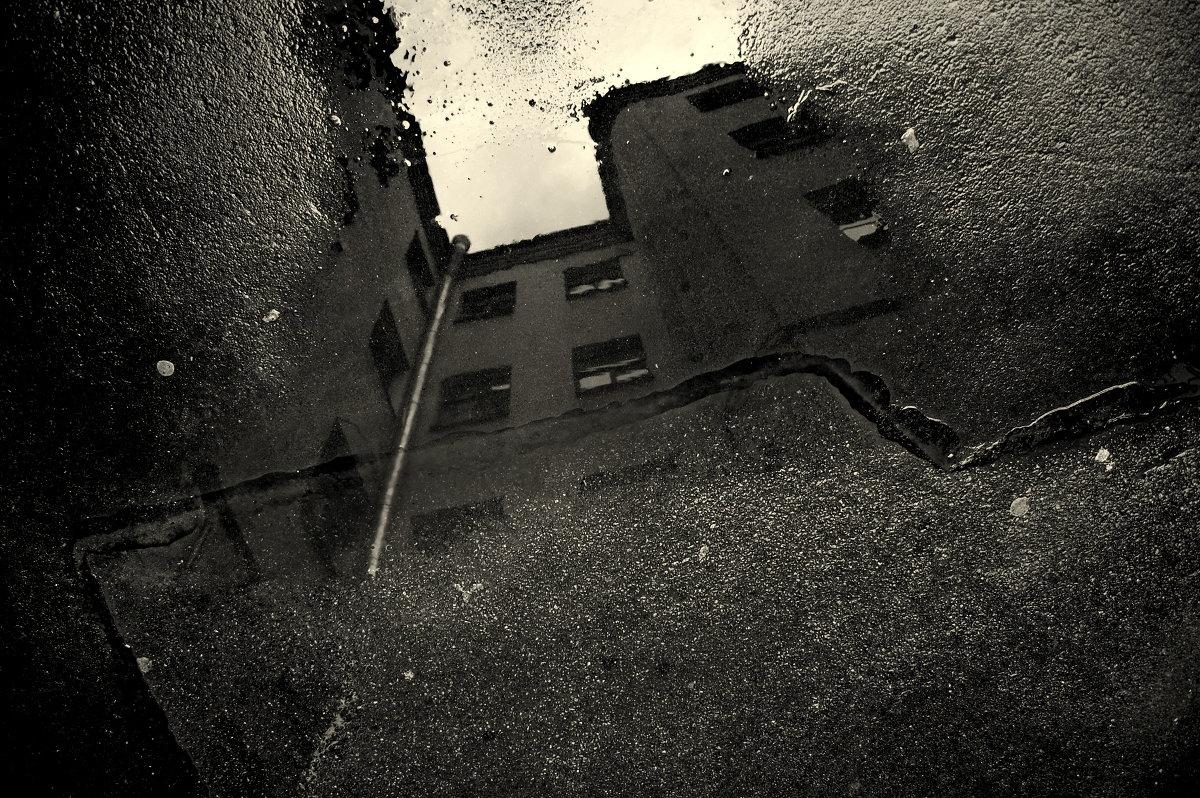 Кривые зеркала Питера - Андрей Михайлин