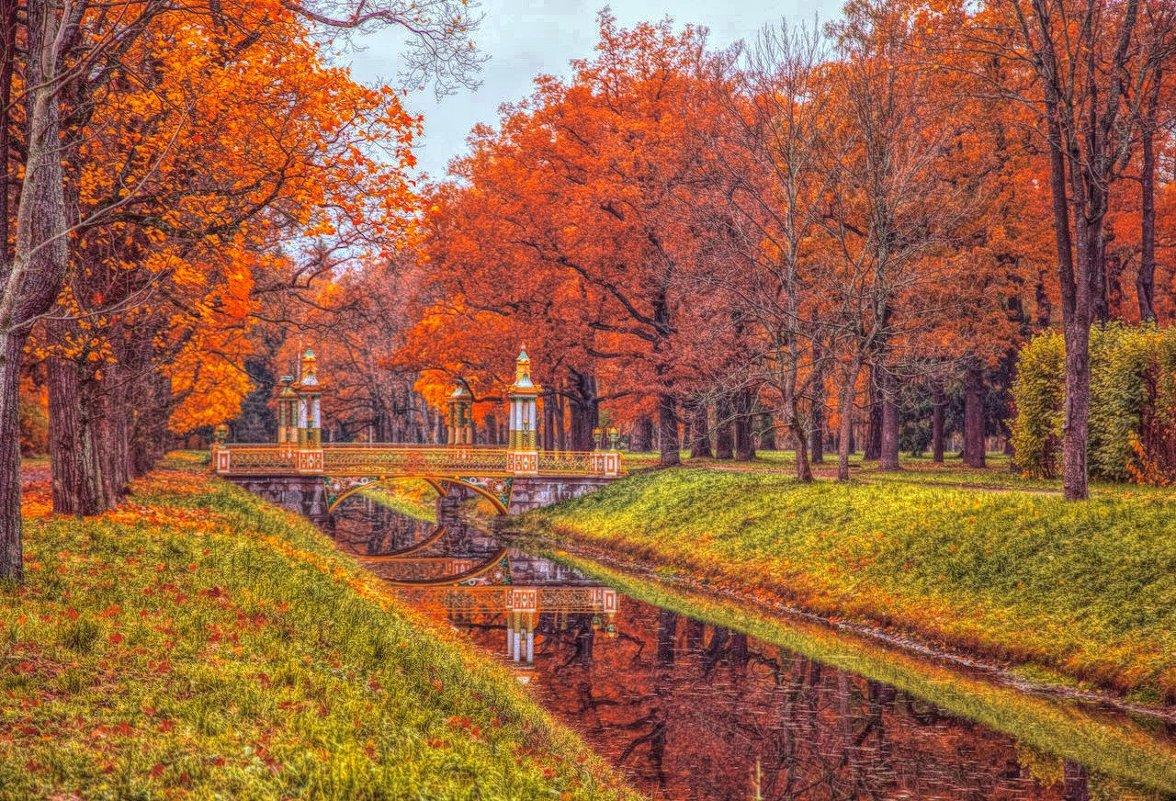 Красавица Осень! - Натали Пам
