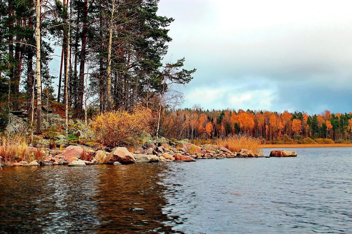 Ладога золотая осень - Александр