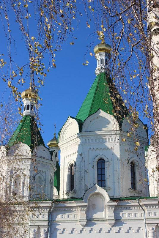 золотые купола - Дмитрий Солоненко