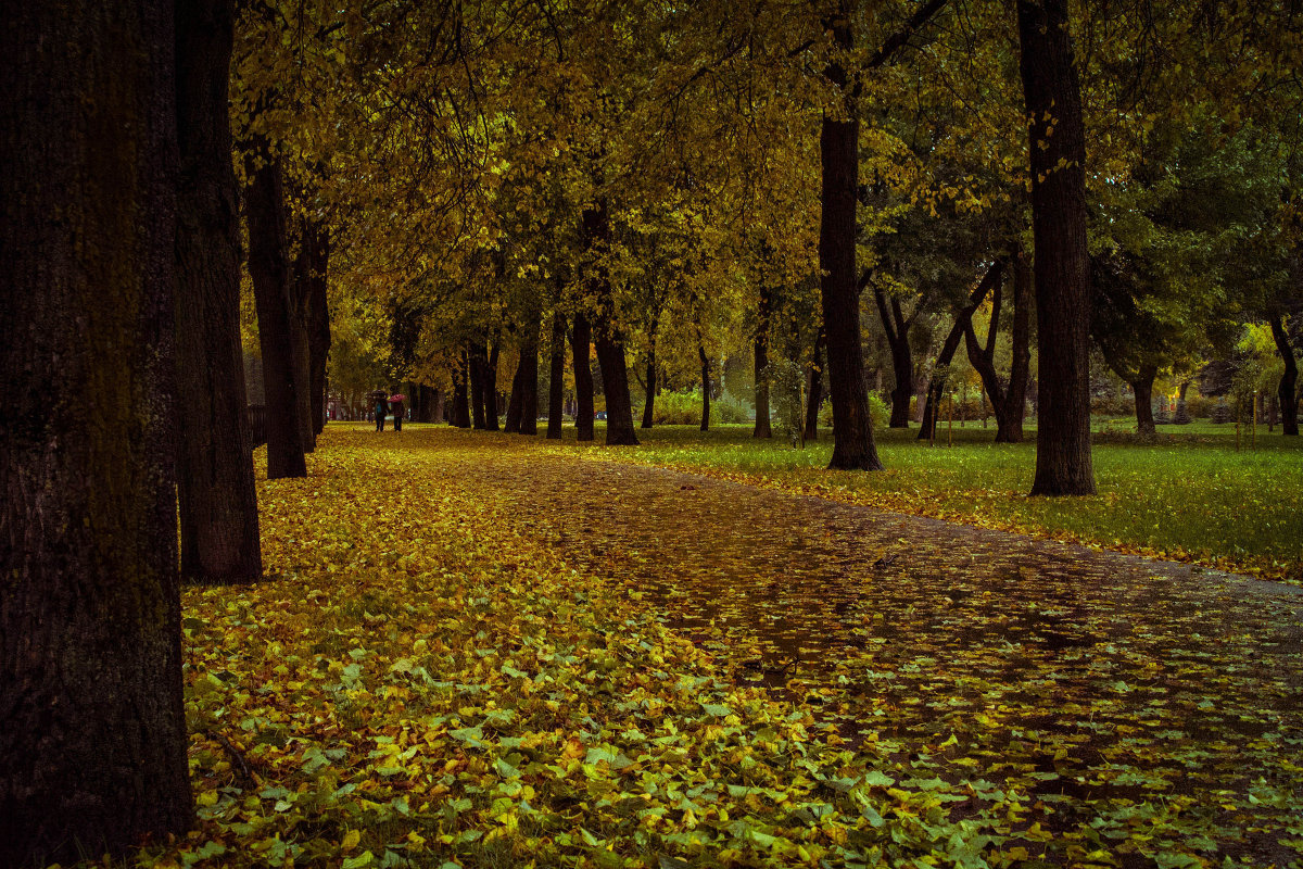 Осенняя! - Андрей Троицкий