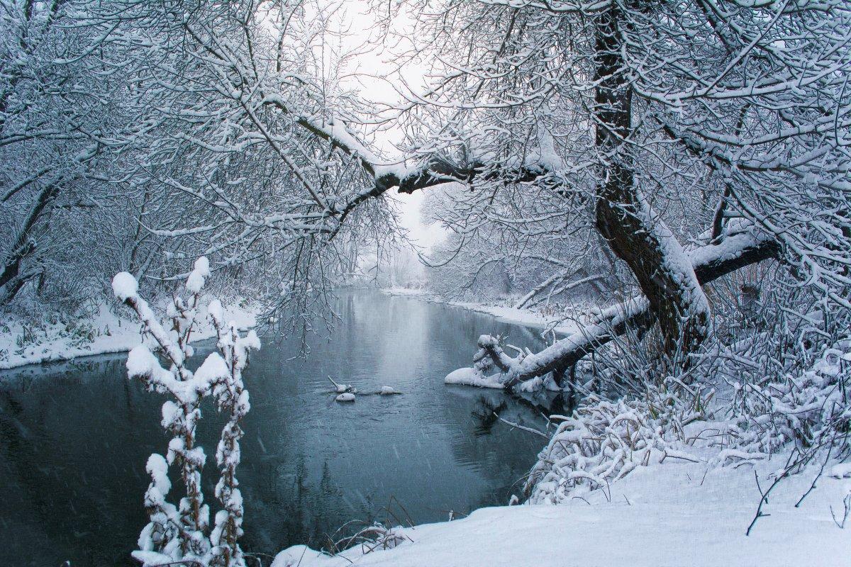 Снегопад на р. Нежеголь. - Оксана Ильченко