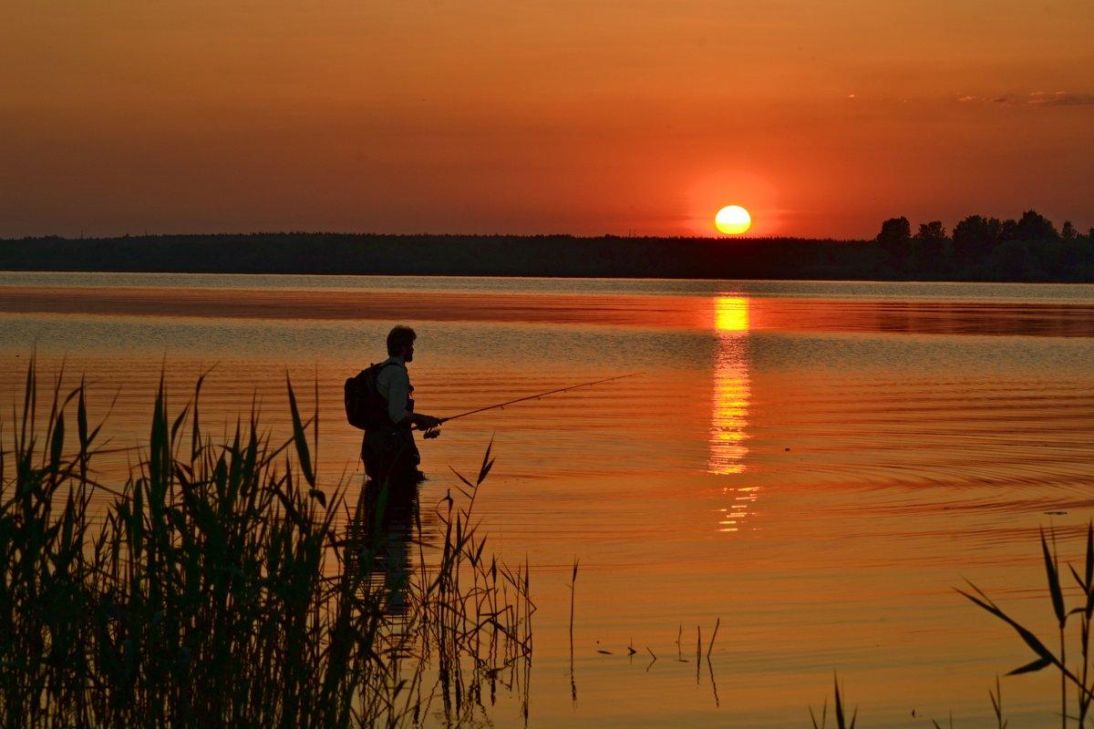 озеро лахтинский разлив рыбалка