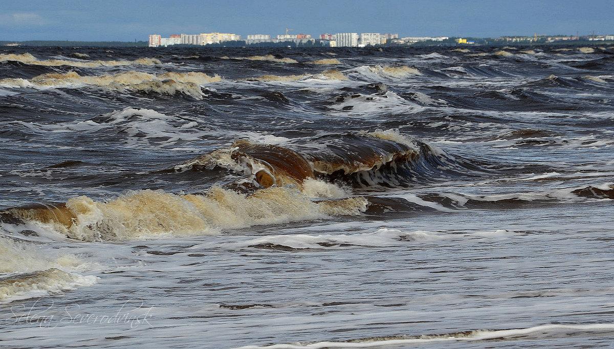 шторм на белом море ягры видео