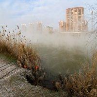 О зиме , фотографии и рыбалке :: Александр Плеханов