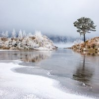 Начало зимы :: Роман Кондрашин