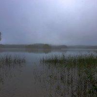 Раннее утро на озере Синовино :: Валерий