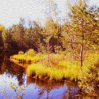 осень золотая.... :: александр дмитриев