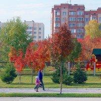 осенний пейзаж поселения :: Наталья Золотых-Сибирская
