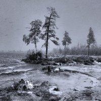 Зима не хотела уступать :: Татьяна Борисова