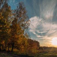 Осенний закат :: Ирина Демидова