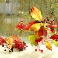 Яркие краски осени :: Татьяна Беляева