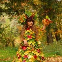 Осень :: Ольга Черкесова