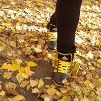 осень осень :: Ирина