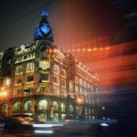 Ночь в Петербурге :: Lisa Buzova