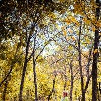 Осенняя прогулка :: Елизавета Ваганова