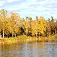 Теплая осень на Донбассе :: Инна Дегтяренко