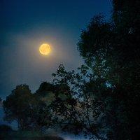 Лунная дорожка :: Александр Кудров