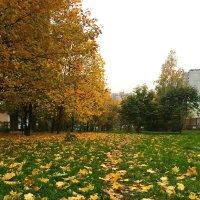 Госпожа Осень :: Надюша