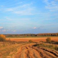 Осень в полях :: Игорь Слободчиков