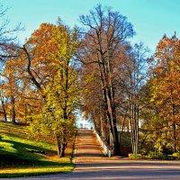 Осень в Петергофе :: Натали Пам