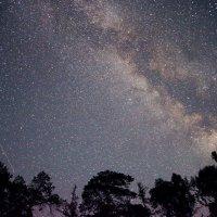 Ночь и огни звезд. :: Iuliia Beliaeva