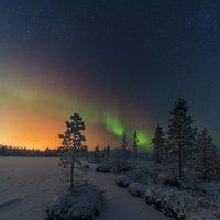 ноябрьский снег ... :: Евгений Молчановский