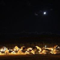 лунная ночь :: Розалия