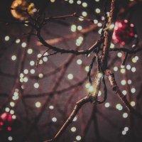 Новогоднее настроение :: Юлия Пантелеева