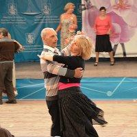 Пара. :: Oleg4618 Шутченко