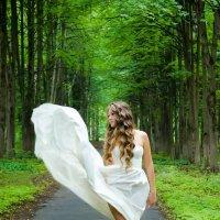 Белый голубь :: Андрей