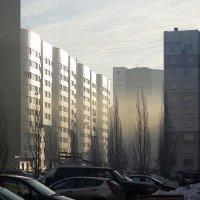 утреняя дымка :: Екатерина