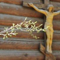 Весна духовная :: Виолетта Бычкова