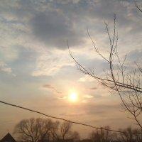 Солнце.Красота природы :: Валерия Полникова