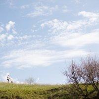 Такая у нас зеленая весна. :: Евгения Савина