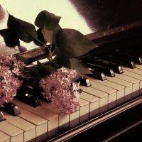 Весенний ноктюрн :: Лара Амелина