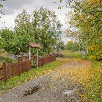 Осень на даче :: sergey.redchenko Сергей Редченко