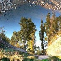 Мир под ногами :: Алла Рыженко