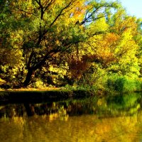 Осенние красоты земли донской :: Анастасия Науменко