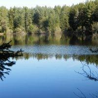 Красивое озеро. :: Светлана Громова
