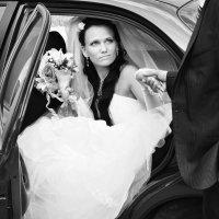 эх эта свадьба)) :: елена леонтьева